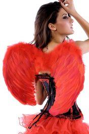 Červená andělská křídla