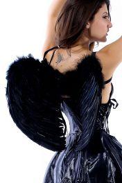 Černá andělská křídla